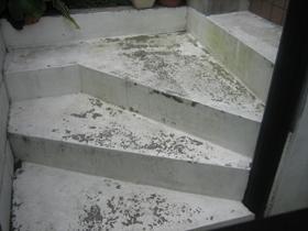 【完工事例】[10.6.7] 藤沢市E様邸 玄関アプローチ階段床・外塀塗装